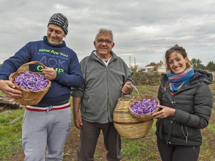 L'AZIENDA - DA BUCCHERI (SICILIA) ORO ROSSO DEGLI IBLEI